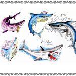 Tattoovorlage Hai,shark,oldschool
