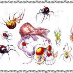 Tattoomotiv, spider,spinnen, ratte, witwe,skull,totenkopf